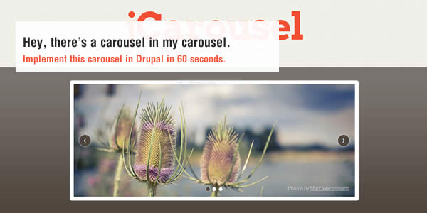 add skins to jcarousel in drupal 7